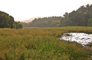 2003 India River Valley