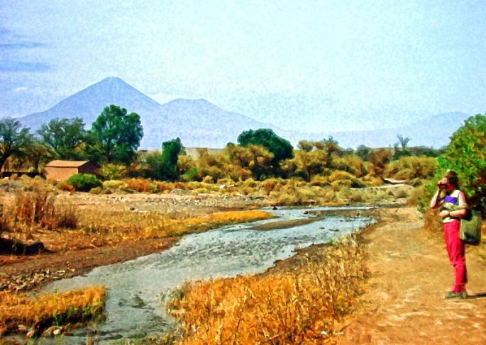 Dido by San Pedro River (Chile)