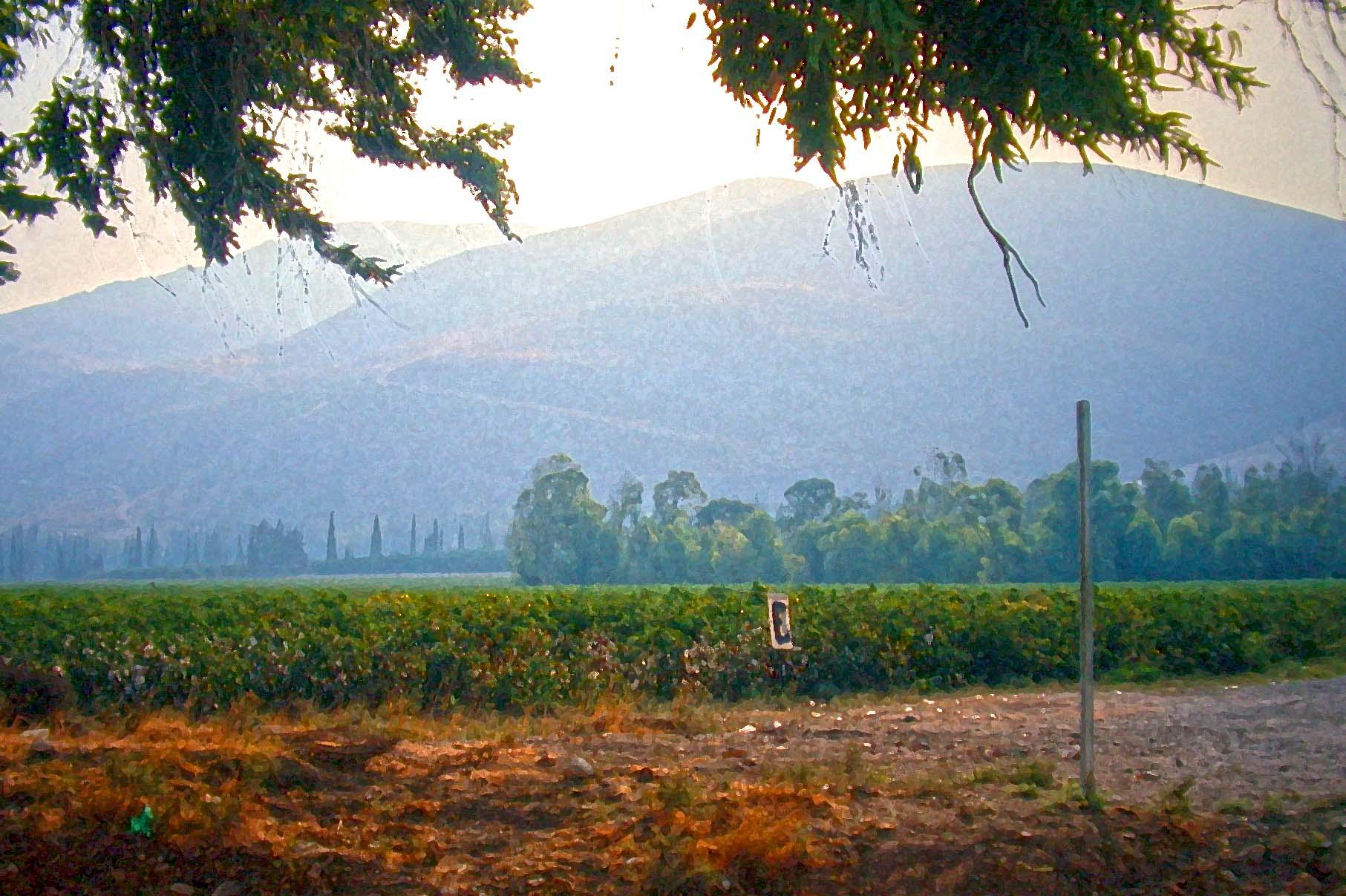 Gilboa Massif from the Jezreel Plain