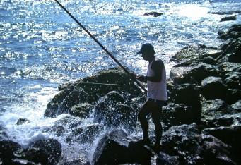 Cesaria - Fishing