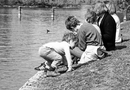 Regent's Park - Lake Scene 2