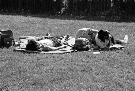 Regent's Park - Sunbathing with the Dog 2