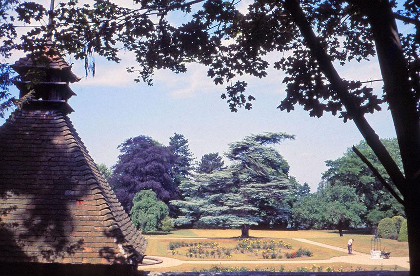 Carmel Gardens.jpg